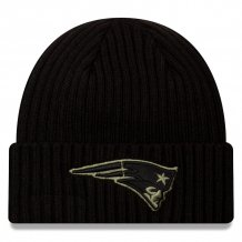 New England Patriots - 2020 Salute to Service NFL Knit hat